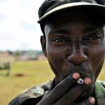 Pandemia chaosu w Afryce