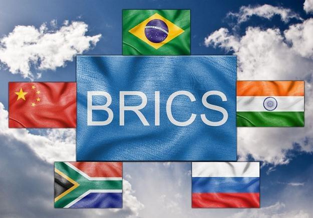 Państwa BRICS utworzą wspólny bank rozwoju i funduszu rezerwowego /©123RF/PICSEL