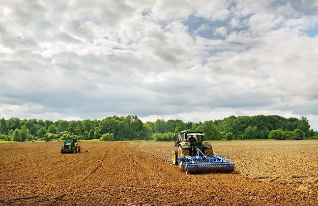 Państwowe grunty rolne podrożały o 15 proc. /©123RF/PICSEL