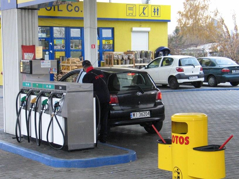 Państwowy Lotos nie wierzy w rządowy program elektromobilności? /Wprost /East News