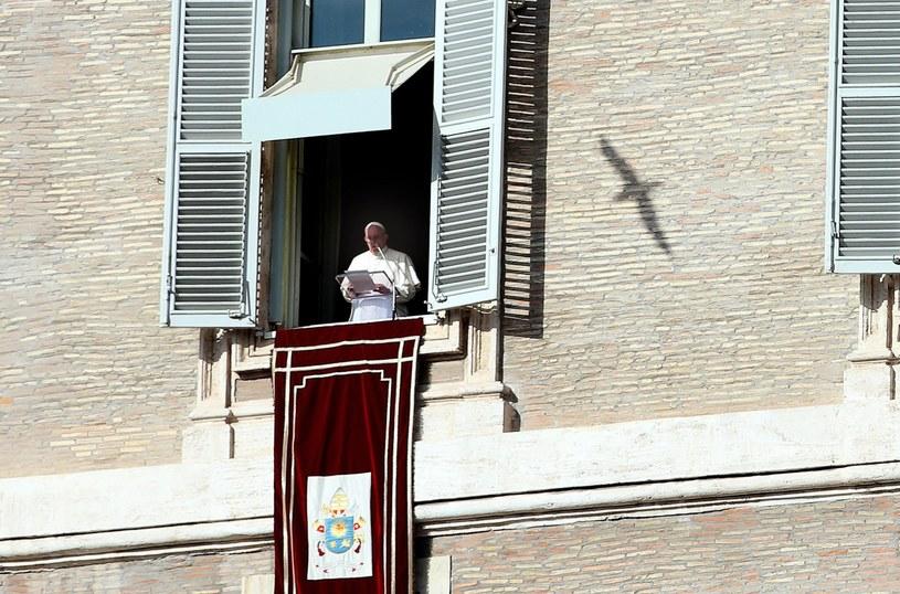 Papież Franciszek /ALESSANDRO DI /PAP/EPA
