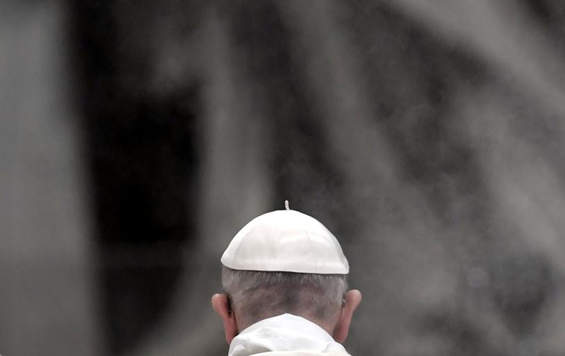 Papież: potępiamy pedofilię w Kościele i prosimy o przebaczenie /TIZIANA FABI / AFP /AFP