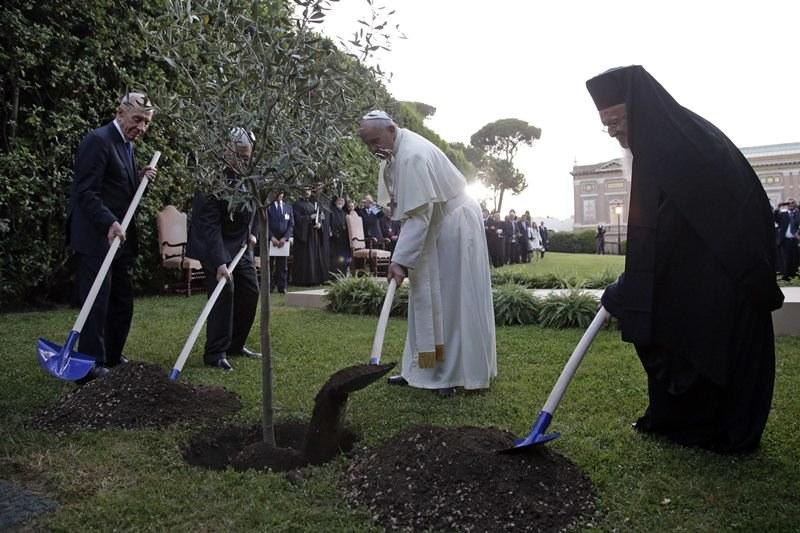 Papież wraz z przywódcami sadzi drzewka /MAX ROSSI / POOL /PAP/EPA