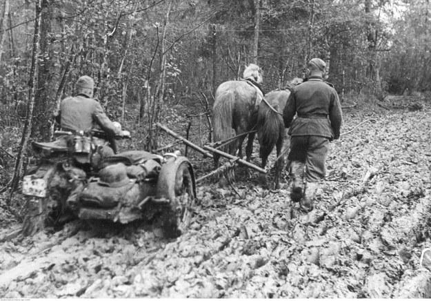 Para koni ciągnie przez błoto niemiecki motocykl z koszem na froncie wschodnim /Z archiwum Narodowego Archiwum Cyfrowego
