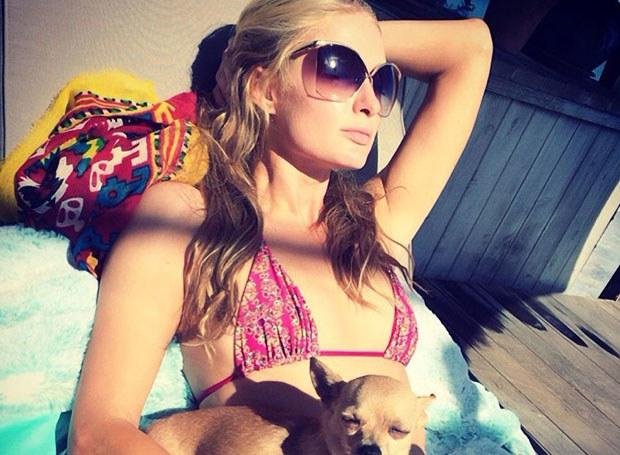 Paris Hilton z jednym ze swoich psów /face to face /East News