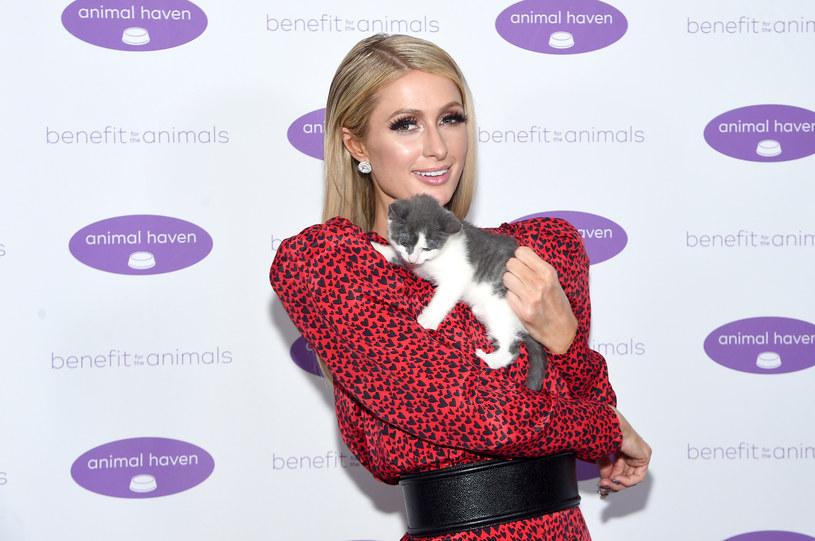 Paris Hilton /Jamie McCarthy /Getty Images