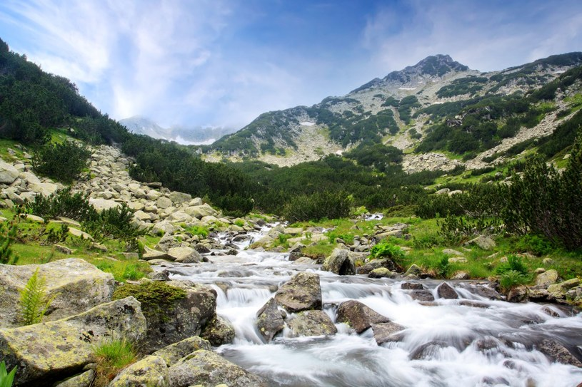Park Narodowy Pirinu /123RF/PICSEL