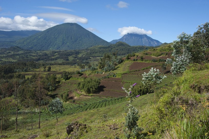 Park Narodowy Virunga /Rights Managed /East News