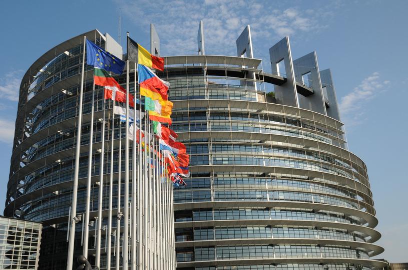 Parlament Europejski w Strasburgu /Philippe Halle  /123RF/PICSEL