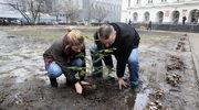 Partia Razem: Wycinka drzew w stolicy to efekt ustawy i zaniechań ratusza