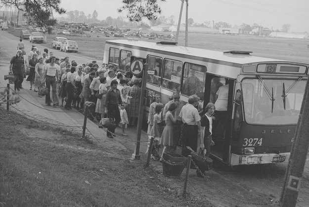 Pasażerowie wsiadają do autobusu Jelcz Berliet PR100 linii 139 na przystanku autobusowym w Powsinie w Warszawie /Z archiwum Narodowego Archiwum Cyfrowego