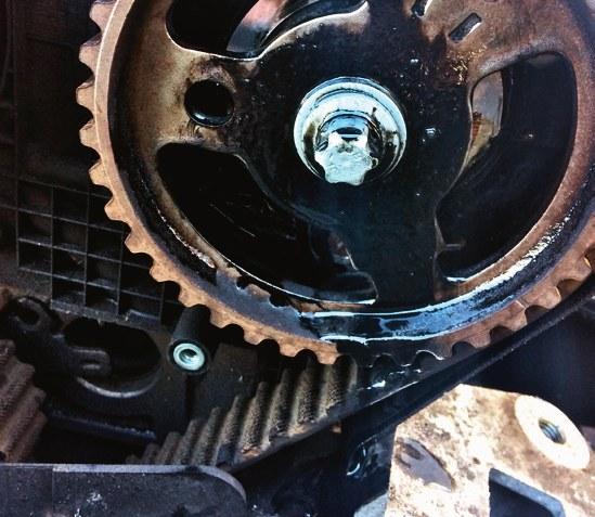 pasek rozrządu /Motor