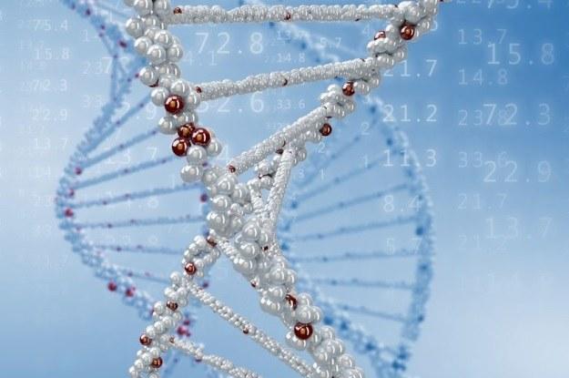 Patentowanie genów ostatecznie zabronione /123RF/PICSEL