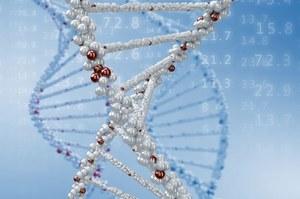 Patentowanie genów zabronione