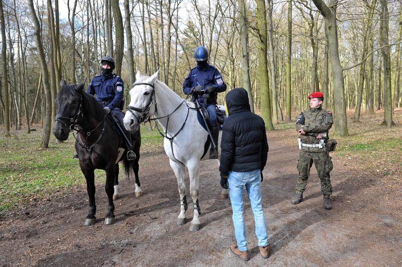 Patrol policji konnej z Żandarmerią Wojskową w Lasku Arkońskim w Szczecinie / Marcin Bielecki    /PAP