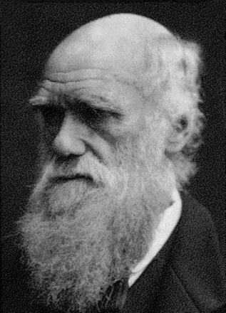 Patronem nagrody jest Darwin - autor teorii ewolucji /AFP