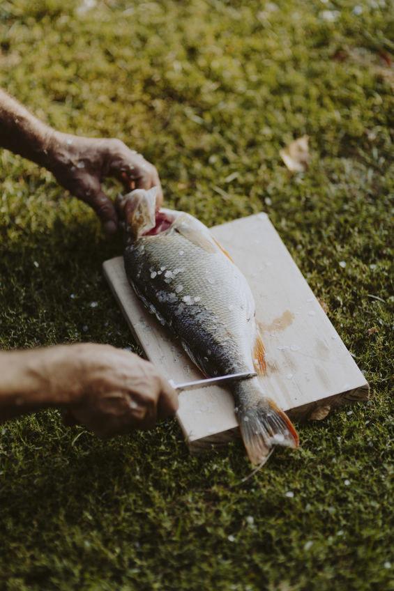 Patroszenie ryby /©123RF/PICSEL