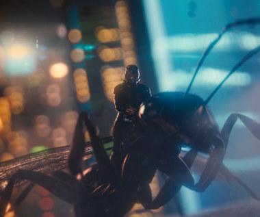 """Paul Rudd w scenie z filmu """"Ant-Man"""""""
