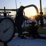 Pawlak: We wtorek rząd powinien zatwierdzić porozumienie ws. gazu