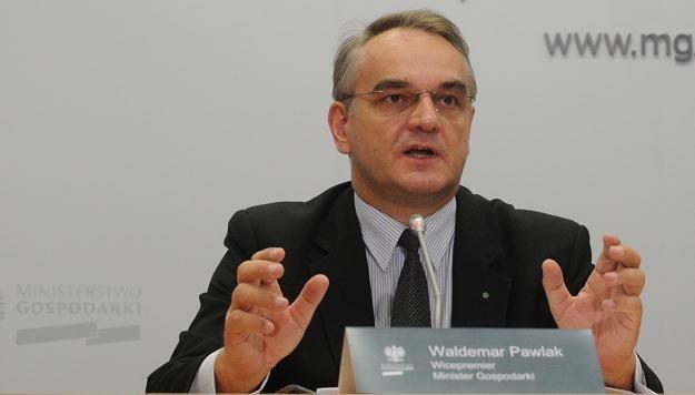 Pawlak zapewnia, że Polska pomoże Magnie /PAP