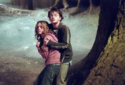Peleryny niewidki używa m.in. Harry Potter /AFP