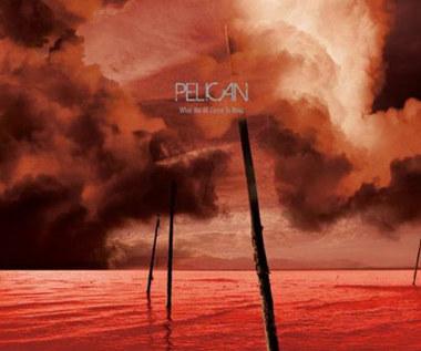Pelican: Volume w prawo