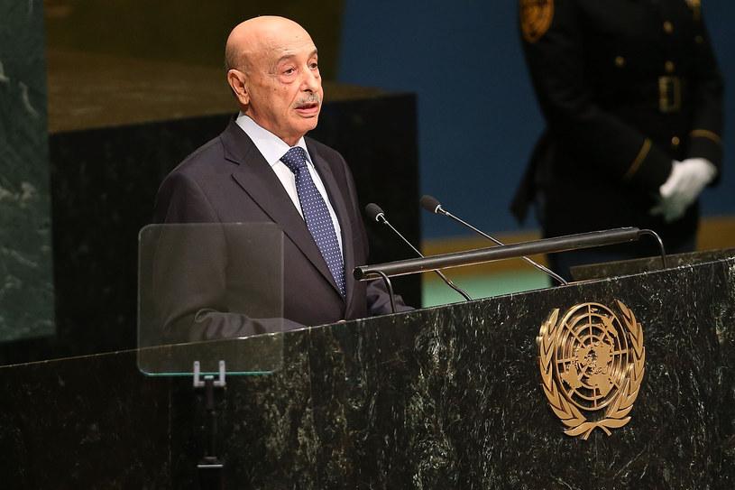 Pełniący obowiązki głowy państwa Agila Saleh Essa Gwaider /AFP