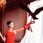 Penelope Cruz gwiazdą kalendarza Campari 2013
