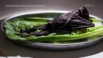 Penis byka, ser z larwami, spleśniały rekin. Muzeum obrzydliwego jedzenia w Szwecji