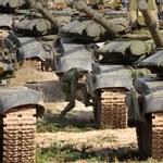 Pentagon: Rosja wciąż wysyła żołnierzy w rejon Ukrainy