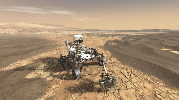 Perseverance / NASA/JPL-Caltech /Materiały prasowe