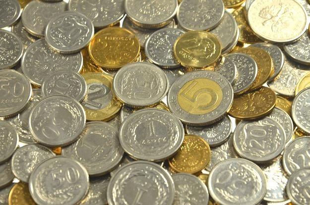 Perspektywa obniżek stóp NBP będzie osłabiać złotego /©123RF/PICSEL
