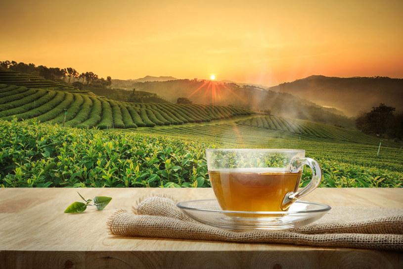 Pestycydy w herbacie /©123RF/PICSEL