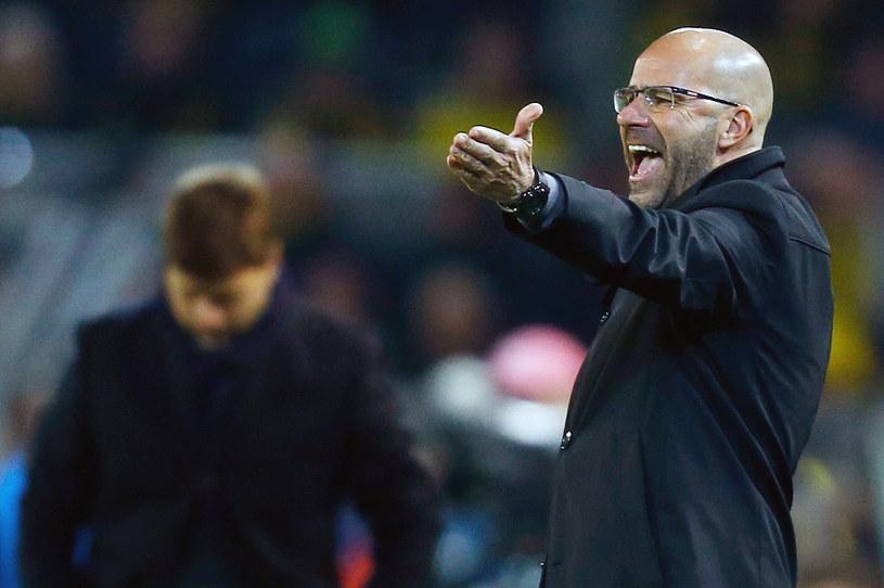 Peter Bosz, trener Borussii Dortmund. /AFP