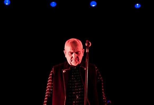 Peter Gabriel podczas występu w Oświęcimiu  /Mateusz Moskała /RMF FM