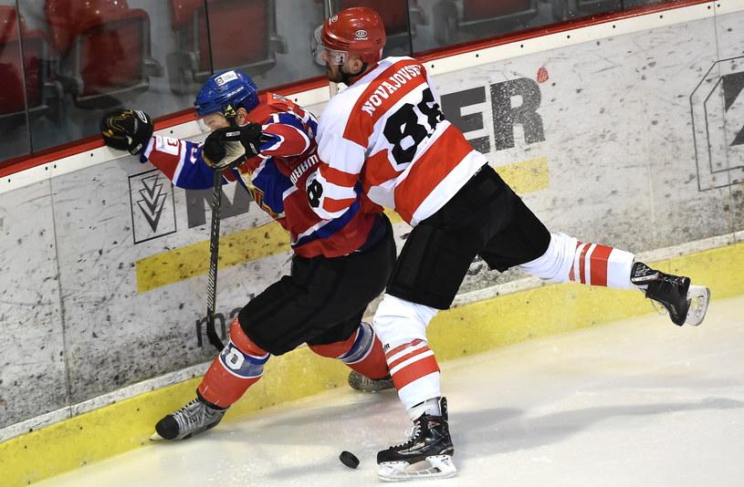 Peter Novajovsky w meczu z TMH Polonią Bytom / Jacek Bednarczyk    /PAP