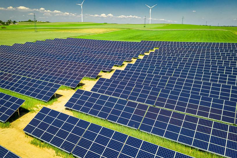 PGE Energia Odnawialna chce postawić na 100 hektarach panele fotowoltaiczne, fot. Jacek Nowak /123RF/PICSEL