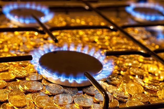 PGNiG ma 98 proc. udział w krajowym rynku gazu /© Panthermedia