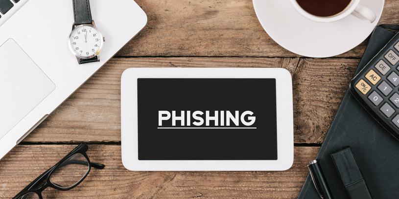 Phishing, czyli uważaj na swoje dane w Internecie /Adobe Stock