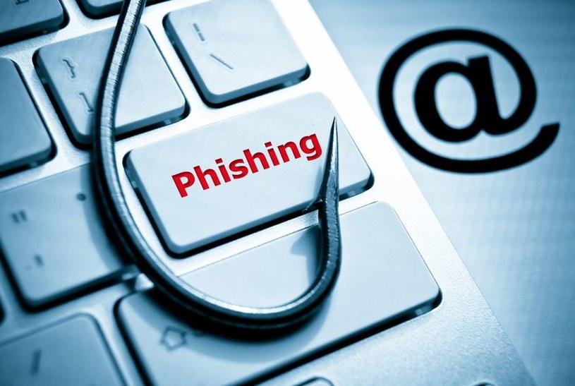 Phishing i spear phishing są częstymi sposobami wykorzystywanymi przez cyberprzestępców do ataków /123RF/PICSEL