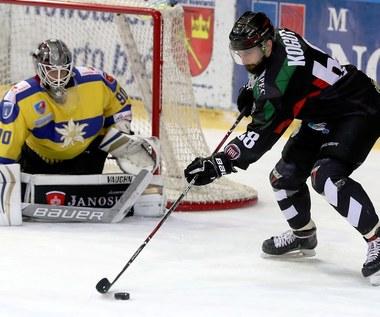 PHL. TatrySki Podhale Nowy Targ - GKS Tychy 2-3 w półfinale