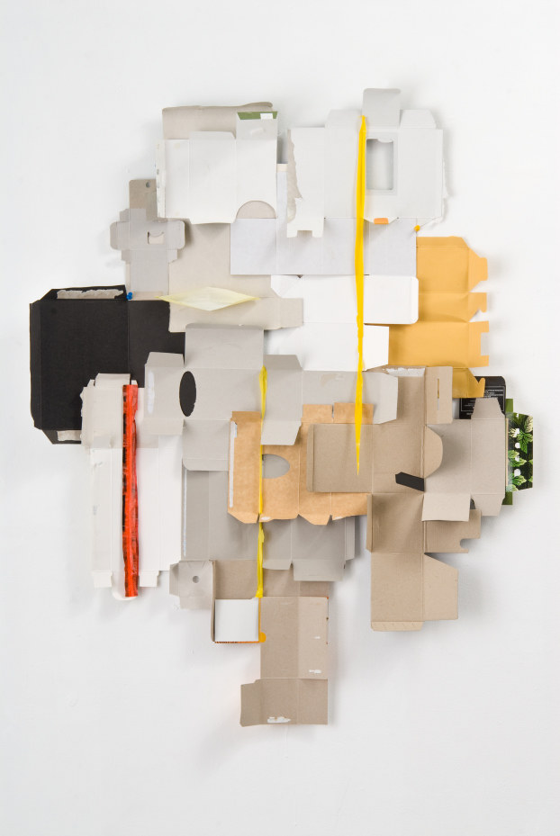 Picabia (2008) /D. Cohen /materiały prasowe