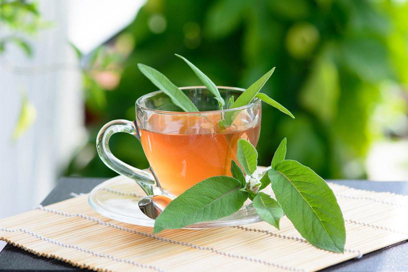 Picie herbatki z szałwii pomoże w nauce i zapamiętywaniu /123RF/PICSEL