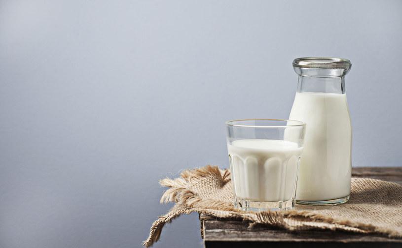 Picie wielbłądziego mleka zalecane jest przy cukrzycy /123RF/PICSEL
