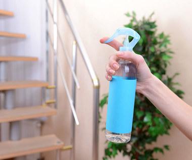 Pięć naturalnych sposobów na świeży zapach w domu