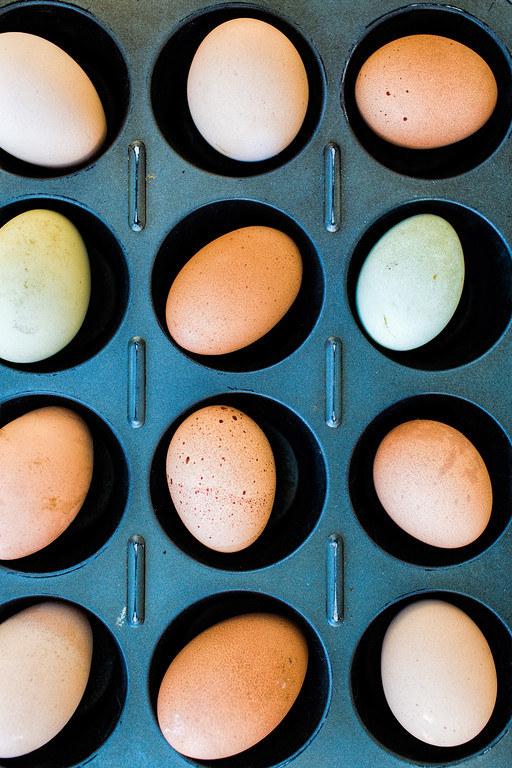 pieczone jajka /© Photogenica