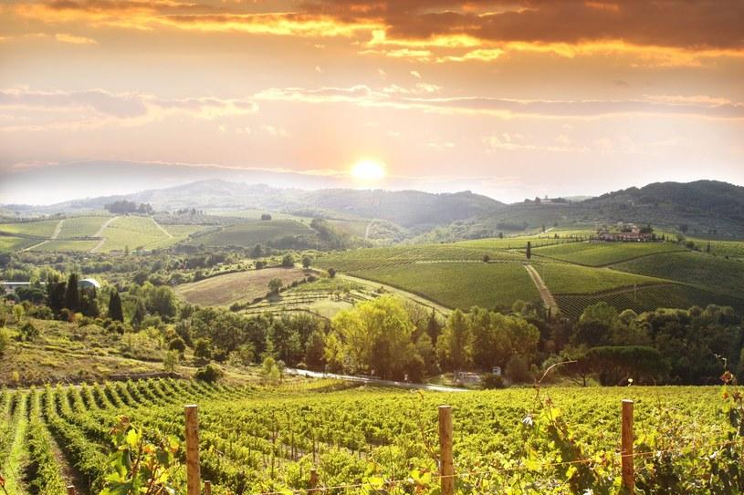 Piękna Toskania /123RF/PICSEL