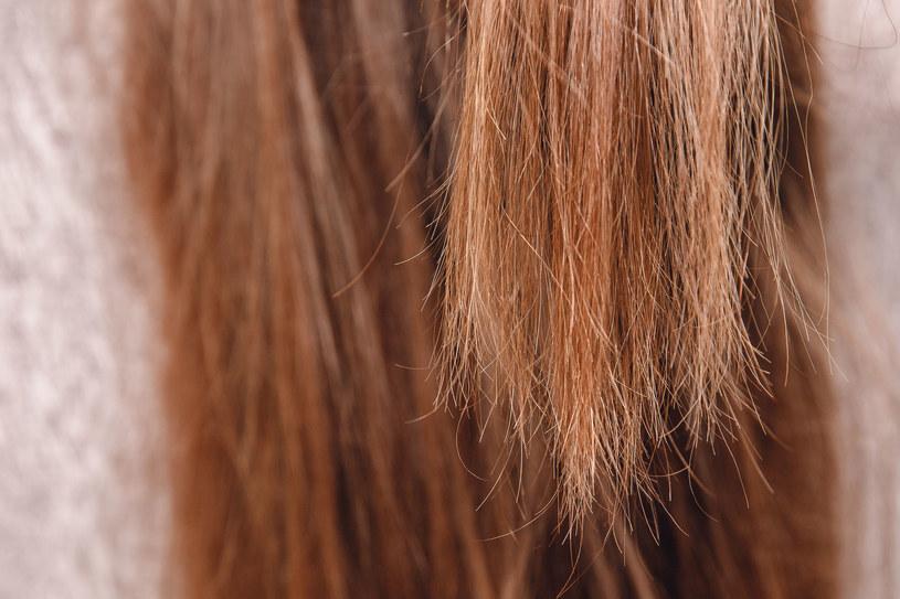 Piękne włosy to marzenie wielu kobiet. Jeżeli nie są zdrowe i zadbane, psują cały wizerunek /123RF/PICSEL