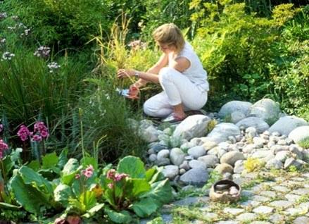 Pielęgnuj swój ogród