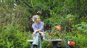 Pielęgnuj swój trawnik jesienią i zimą!